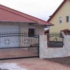 Poarta culisanta si panouri de gard confectionate din fier forjat model floral - Porti de acces