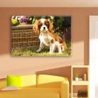 Tablou canvas 0131 - Tablouri Canvas 0126 - Animale