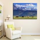 Tablou canvas 0183 - Tablouri Canvas 0126 - Animale