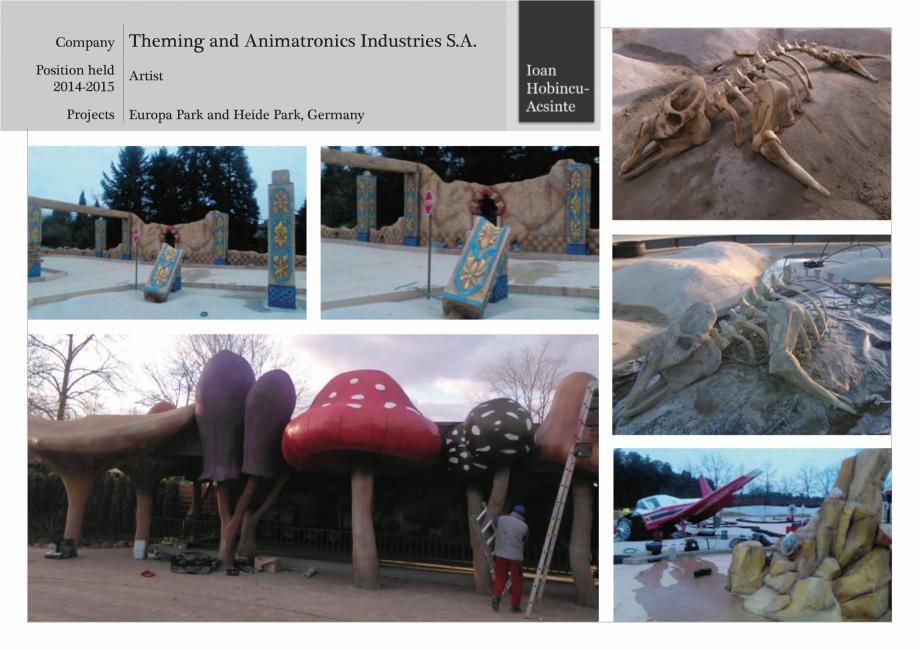 Lucrari, proiecte Portofoliu lucrari Ioan Hobincu Acsinte MAGENTA DECOR Executie decoruri pentru fatade tematice personalizate MAGENTA DECOR  - Pagina 41