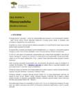 Lemn exotic pentru decking deckexpert.ro - MASSARANDUBA