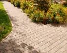 Pavaj si dale din beton pentru curte, gradina si alei WISE
