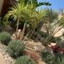 Studio Garden - Amenajare gradina