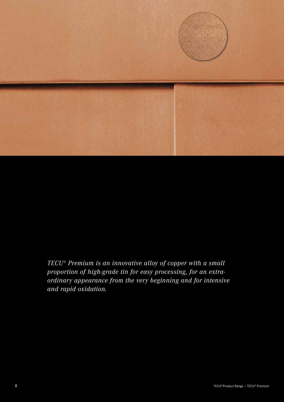 Catalog, brosura Produse TECU 2018 TECU MONSENA Acoperișuri fălțuite MONSENA an with pure copper.  Offering architecture new perspectives.  TECU® Product Range — TECU®... - Pagina 10