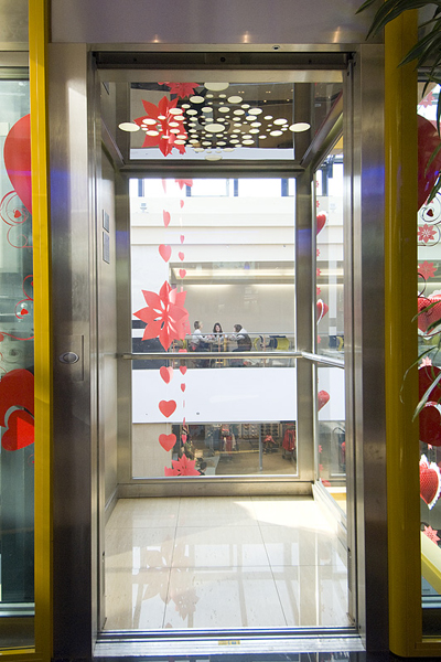 Lift panoramic - Mall Tg Mures panoramic Elmas Ascensor