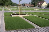 Pavaje ecologice Ecoraster Pavajele ecologice Ecoraster de la Makroplast sunt permeabile si