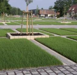 Pavaje ecologice permeabile Ecoraster KADRA