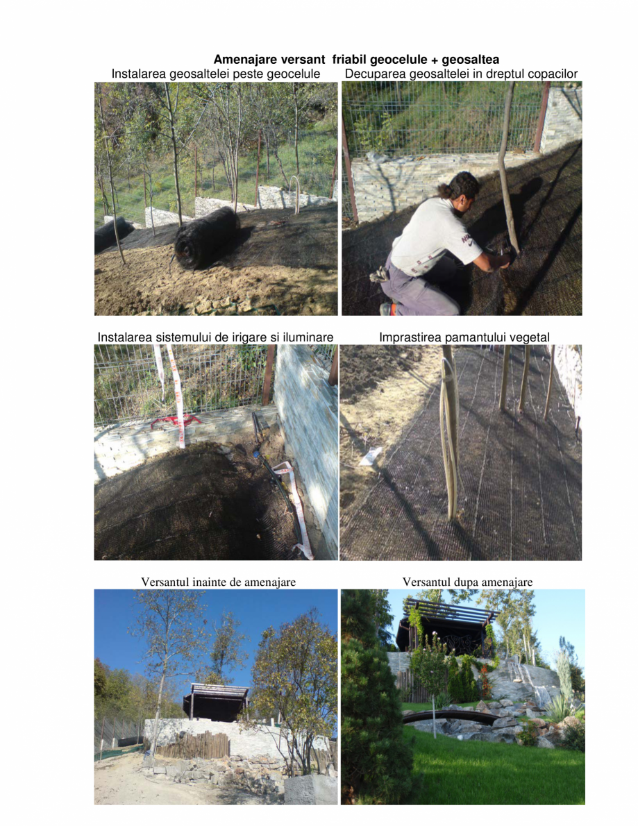 Pagina 3 - Geosaltele  GEOCOM TRADING&CONSULTING TRISTRATIFICATE, TRISTRATIFICATE RANFORSATE,...