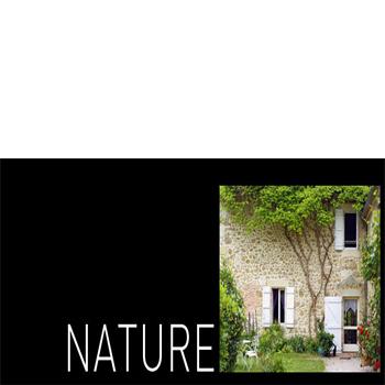 Paletar pentru pardoseala PVC - amenajari de lux / Colectia Nature