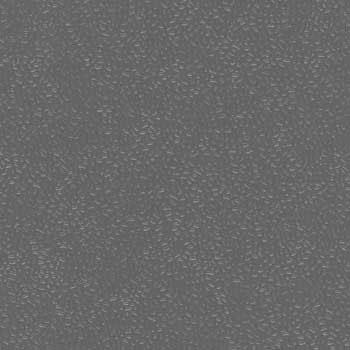 Paletar pentru pardoseala PVC antiderapanta / MAX UNI 0250 Tiger