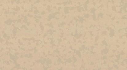 Paletar pentru pardoseala PVC eterogena / 4347 Raphia