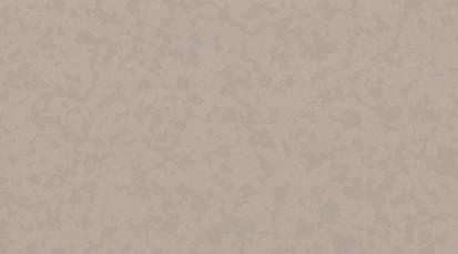 Paletar pentru pardoseala PVC eterogena / 4349 Angora