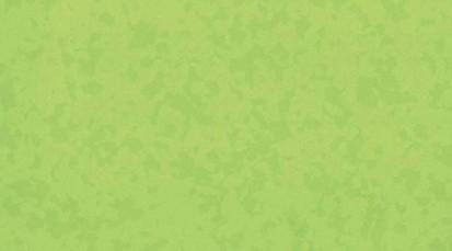 Paletar pentru pardoseala PVC eterogena / 4527 Bamboo