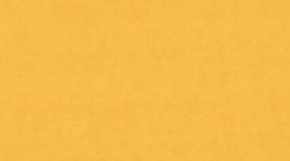 Paletar pentru pardoseala PVC eterogena / 8255 Golden Sunset