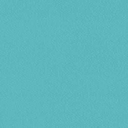 Paletar pentru pardoseala PVC eterogena / 6247 Caribbean