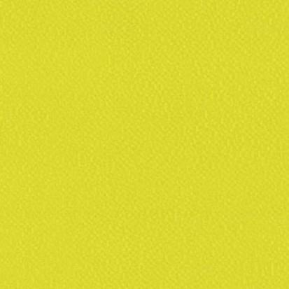 Paletar pentru pardoseala PVC eterogena / 6254 Apple
