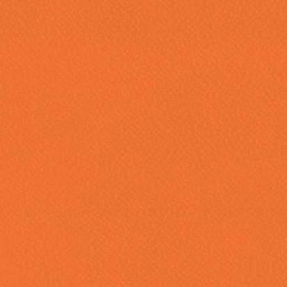 Paletar pentru pardoseala PVC eterogena / 6257 Pumpkin