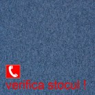 350_gri-albastru - Master - Promo 2019 | Arc Edition