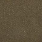 Fortesse 40 - Mocheta - Fortesse SDE | Arc Edition