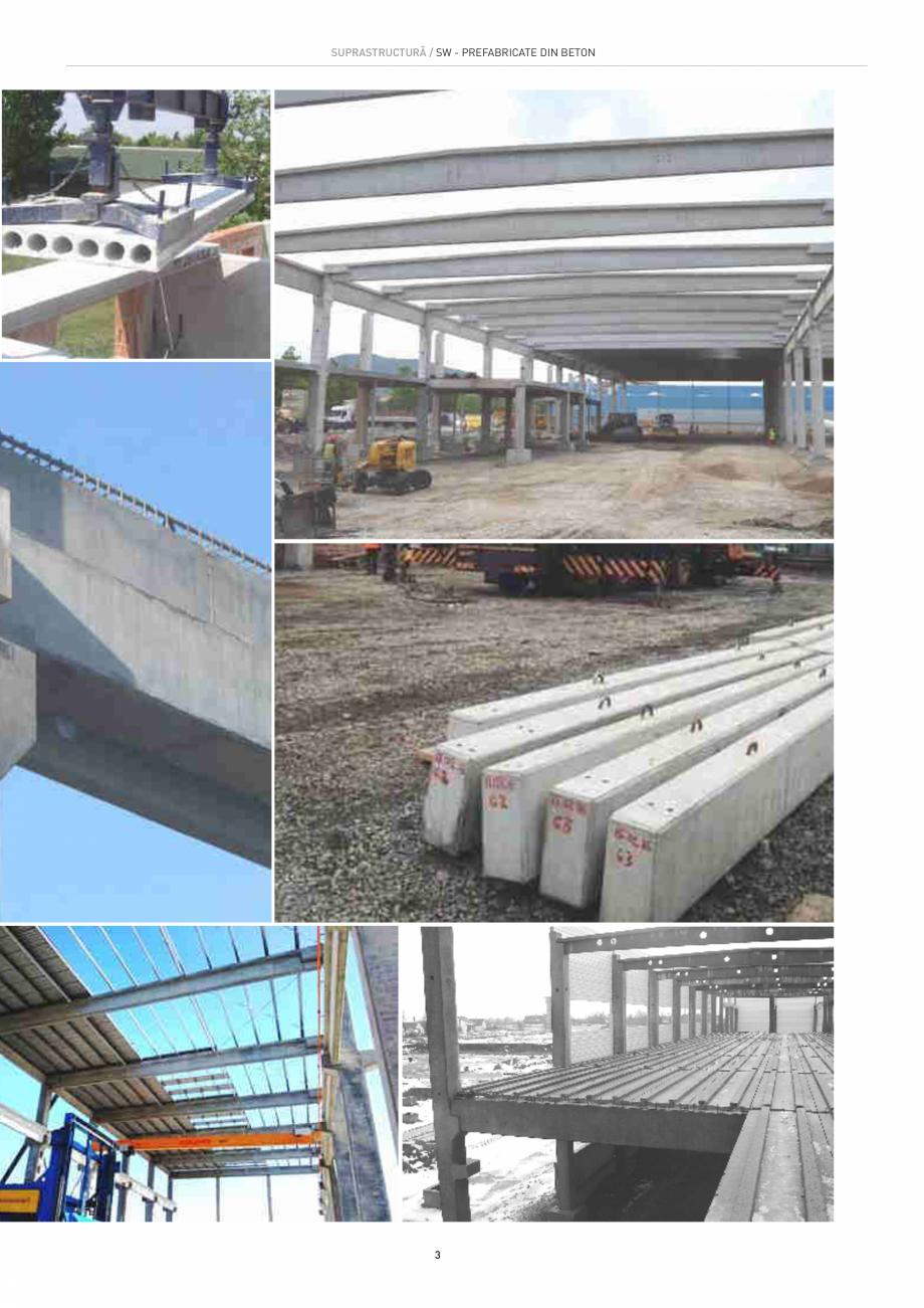 Pagina 3 - Structuri constructii SW UMWELTTECHNIK Gulere, Stalpi, Grinzi principale, Grinzi...
