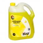 Bidon 5 litri, concentrat - Antigel auto NDC 20, Tip D, concentrat