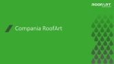 Prezentare generala companie RoofArt