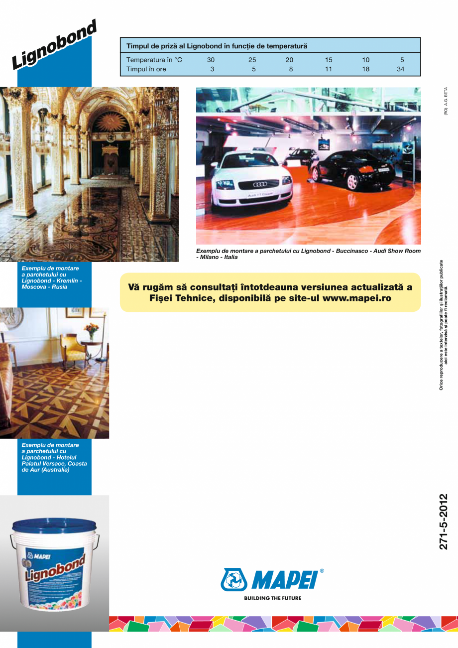 Pagina 4 - Adeziv epoxi-poliuretanic bicomponent fără solvenți pentru lipirea pardoselilor din...