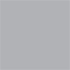 Paletar pentru usi de exterior / RAL7040
