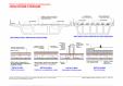 Fisa B1 cu detalii de proiectare si executie pentru poduri rutiere si feroviare UNICO PROFIT -