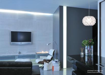 Semineu pe bioetanol cu insertii automate / FLA, Planika, Designart Architecture Tomasz Grzybowski studio