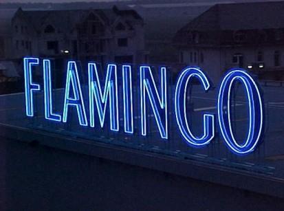 Sistem de iluminare Flamingo Computes Sistem de iluminare Flamingo Computers
