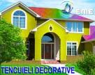 Tencuieli decorative EMEX