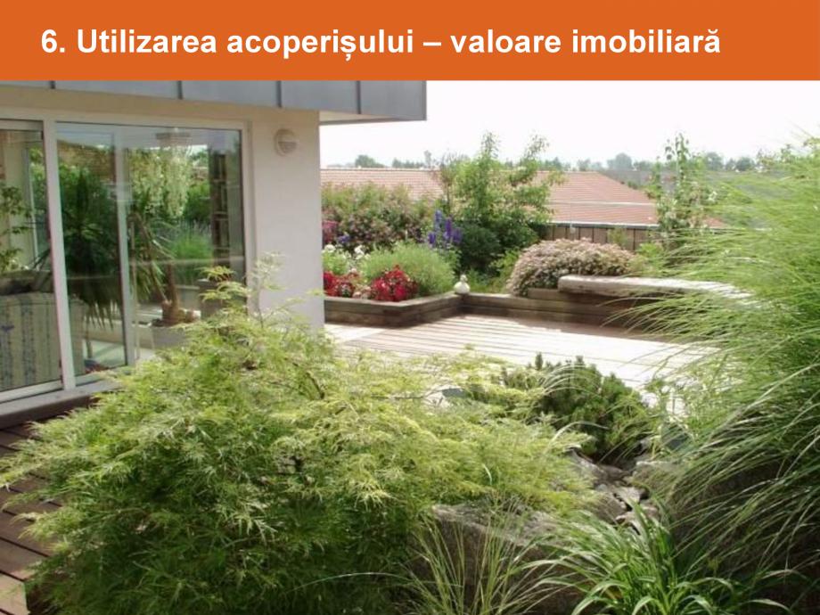 Catalog, brosura Argumente pentru un acoperis verde BAUDER Acoperis cu vegetatie extensiva, intensiva BAUDER  - Pagina 10