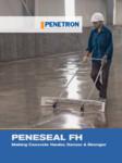 Tratament permanent pentru pardoseli PENETRON - PENESEAL FH