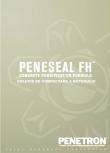 Solutie de compactare a betonului PENETRON - PENESEAL FH