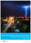 Solutii inteligente in iluminatul public ELBA