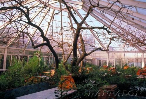 Cupole, domuri din placi de policarbonat DANPALON - Poza 78