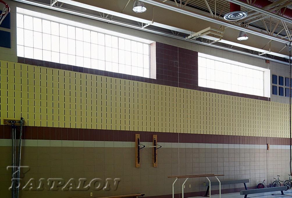 Luminatoare tip banda din placi de policarbonat DANPALON - Poza 84