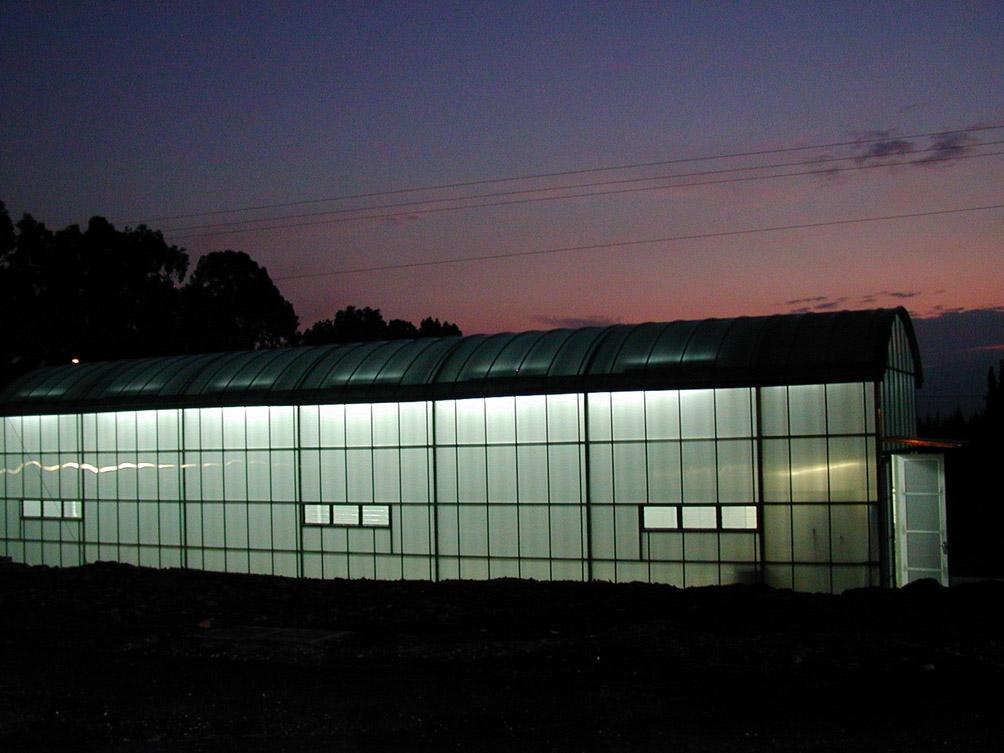 Luminatoare tip banda din placi de policarbonat DANPALON - Poza 123