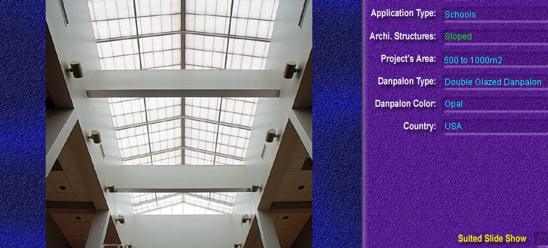 Luminatoare cu panta, din placi de policarbonat DOUBLE GLAZURED DANPALON - Poza 1