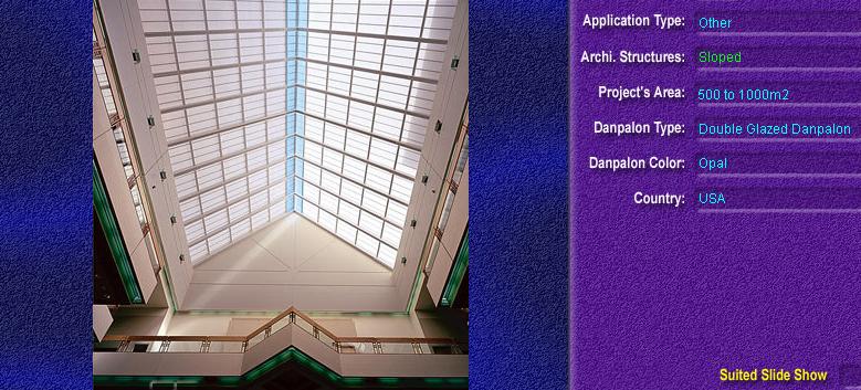 Luminatoare cu panta, din placi de policarbonat DOUBLE GLAZURED DANPALON - Poza 8