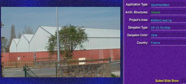Luminatoare cu panta, din placi de policarbonat TRY WALL DANPALON - Poza 6