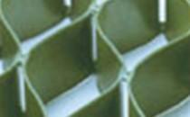 Geosaltele si geocelule pentru controlul eroziunii terasamentelor Geosaltele si geocelulele produse de TENAX SpA, Italia sunt  geosintetice tridimensionale cu rol de control al procesului erozional  ca matrice de ranforsare sau de confinare a stratului de pamant vegetal  la taluzele abrupte sau stancoase.Geosaltele TENAX MULTIMAT-  geosintetice alcatuite din trei straturi de microgeogrile, Geosaltele TENAX MULTIMAT R -  geosaltele ranforsate cu geogrile bietirate, Geosaltele TENAX PROMAT- geosaltele bidimensionale, Geocelulele TENAX TENWEB -  geosintetice tridimensionale.