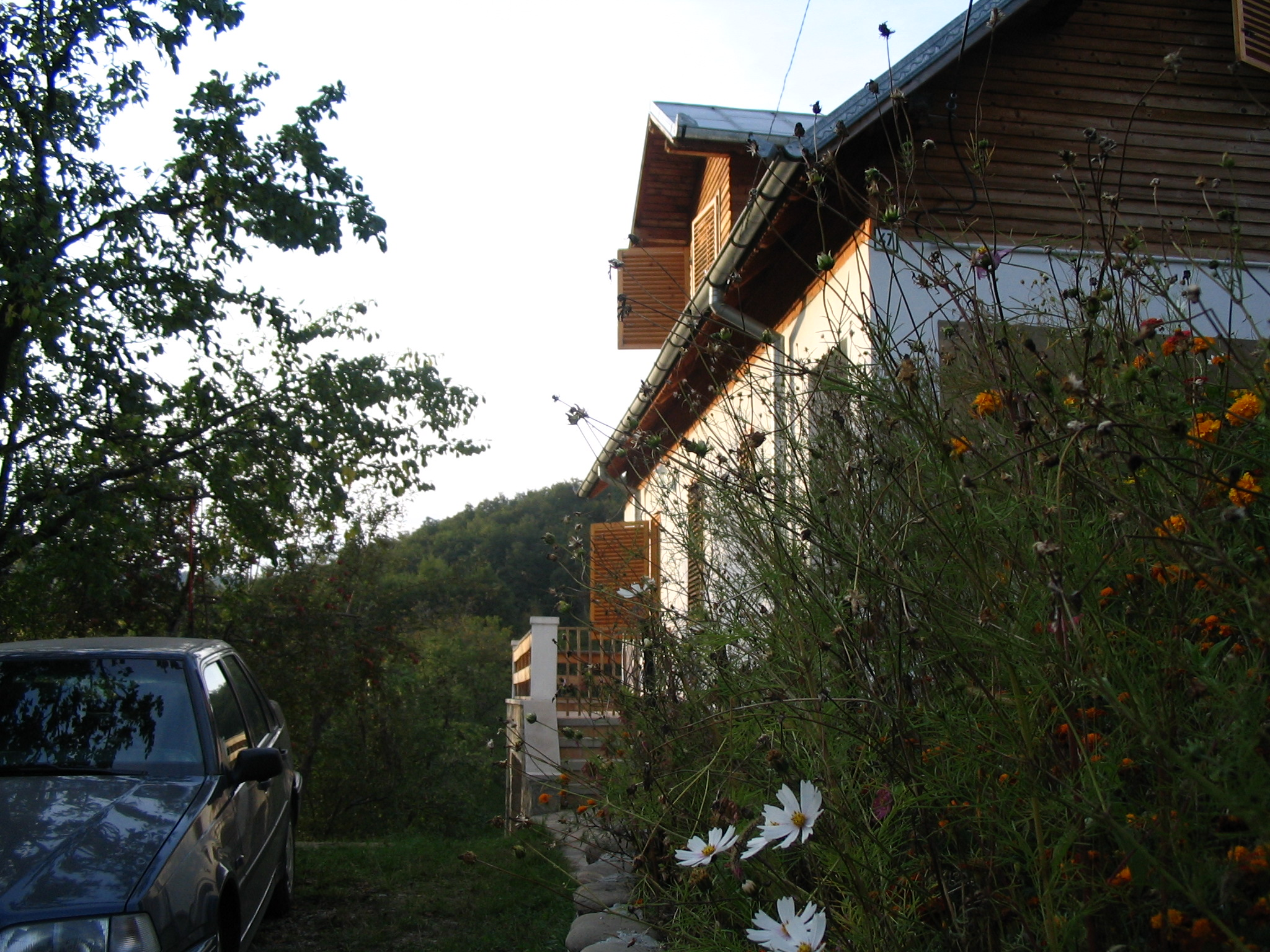 Casa de vacanta, Valenii de Munte  - Poza 13