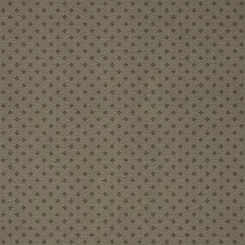 Nuante pentru mocheta personalizata din poliamida ARC EDITION - Poza 115