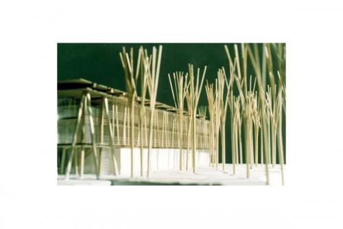 Lucrari, proiecte Complex Doina  - Poza 1
