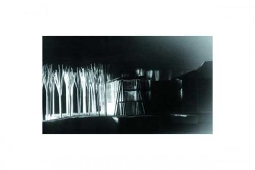 Lucrari, proiecte Complex Doina  - Poza 2