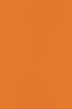 U 105 Tangerine ARTIGO - Poza 20