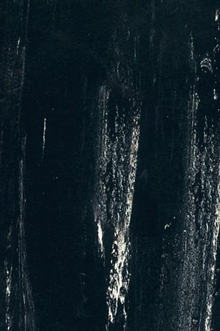 M00 Carbon ARTIGO - Poza 13