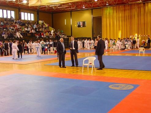 Pardoseli pentru sali de sport PAVIGYM - Poza 1